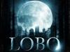 lobo07